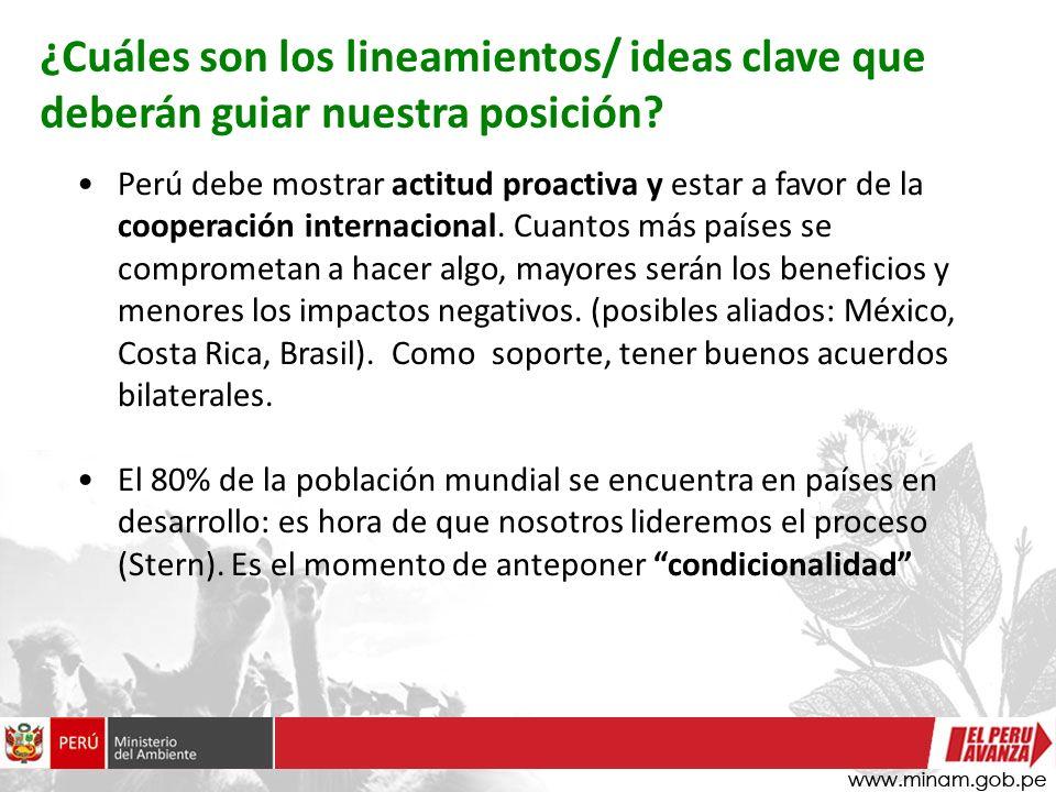 Perú debe mostrar actitud proactiva y estar a favor de la cooperación internacional. Cuantos más países se comprometan a hacer algo, mayores serán los
