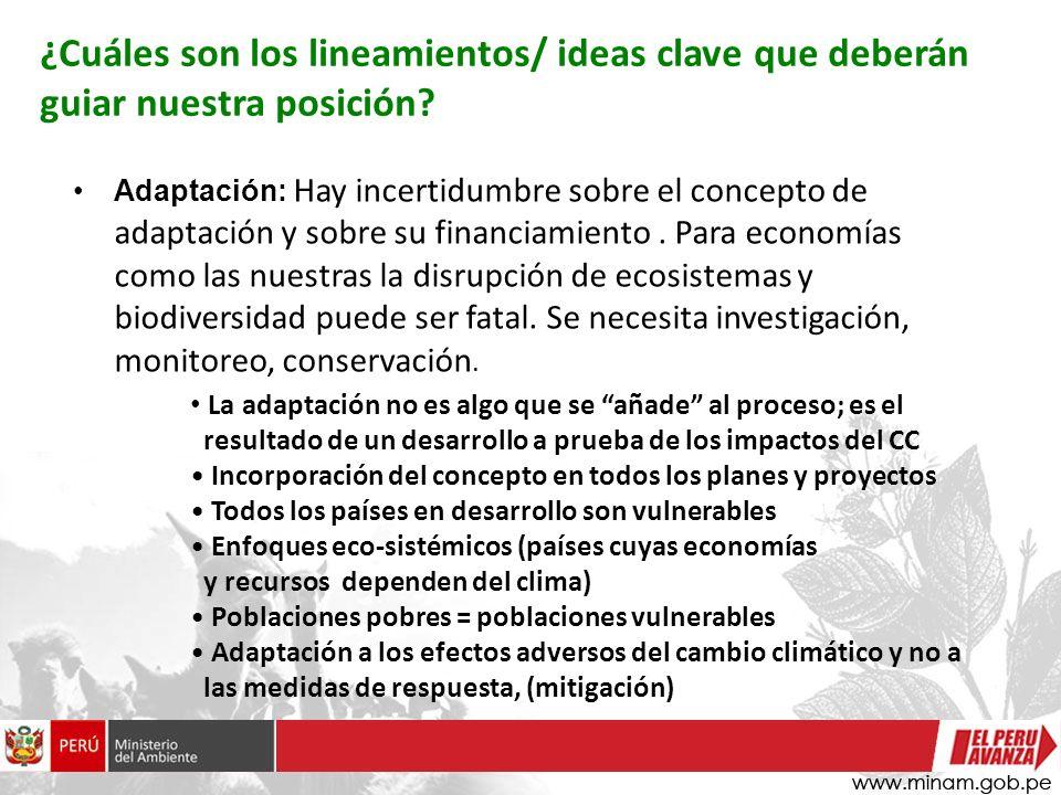 Adaptación: Hay incertidumbre sobre el concepto de adaptación y sobre su financiamiento. Para economías como las nuestras la disrupción de ecosistemas