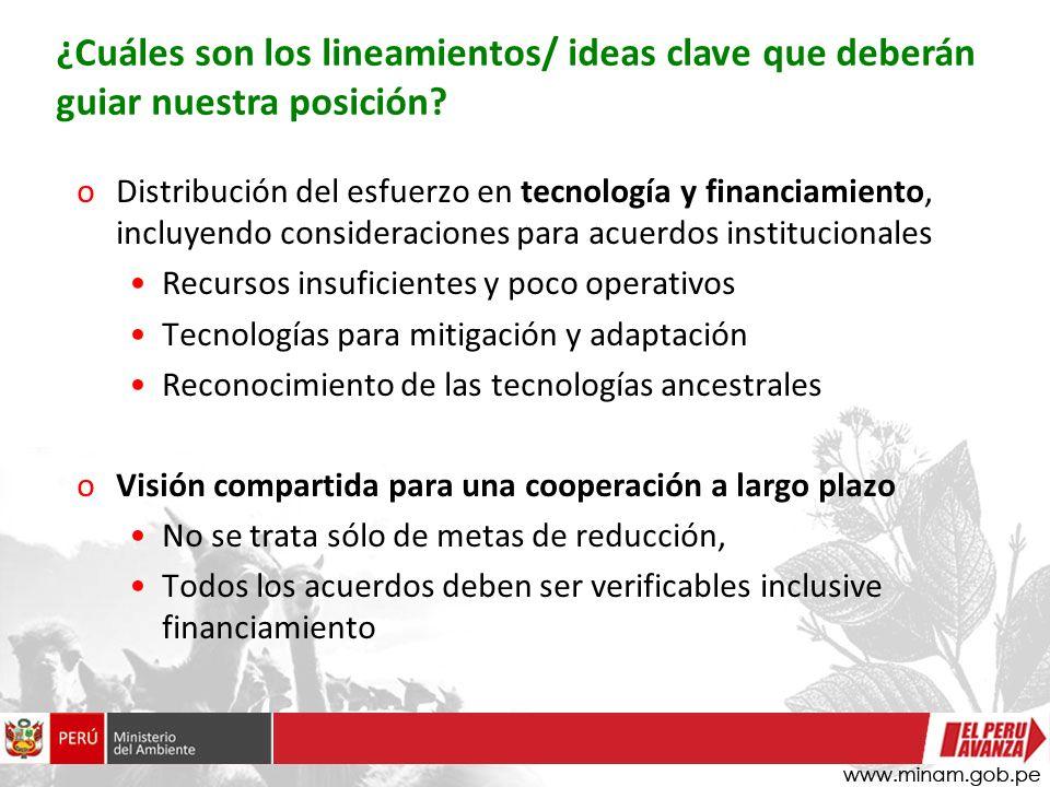 oDistribución del esfuerzo en tecnología y financiamiento, incluyendo consideraciones para acuerdos institucionales Recursos insuficientes y poco oper