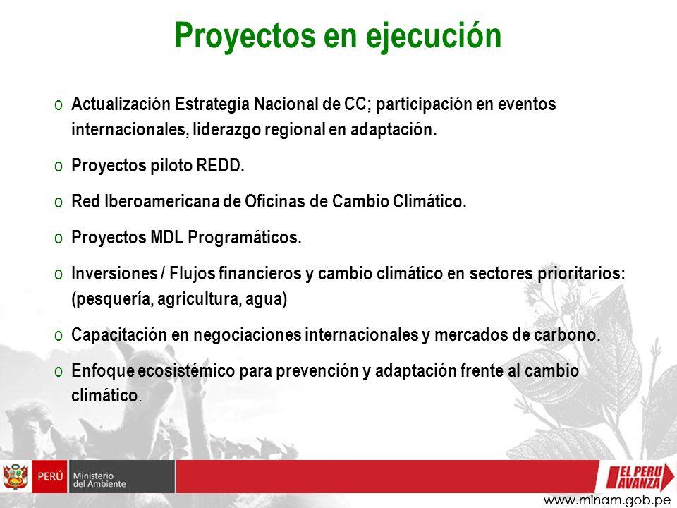 o Actualización Estrategia Nacional de CC; participación en eventos internacionales, liderazgo regional en adaptación. o Proyectos piloto REDD. o Red