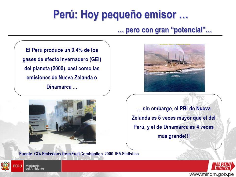 Perú: Hoy pequeño emisor … … pero con gran potencial… Fuente: CO 2 Emissions from Fuel Combustion. 2000. IEA Statistics El Perú produce un 0.4% de los