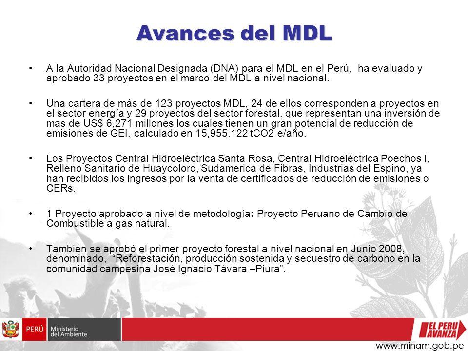 Avances del MDL A la Autoridad Nacional Designada (DNA) para el MDL en el Perú, ha evaluado y aprobado 33 proyectos en el marco del MDL a nivel nacion