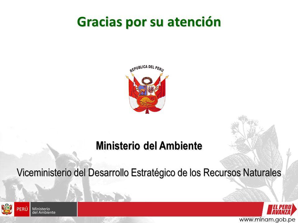 Ministerio del Ambiente Viceministerio del Desarrollo Estratégico de los Recursos Naturales Gracias por su atención