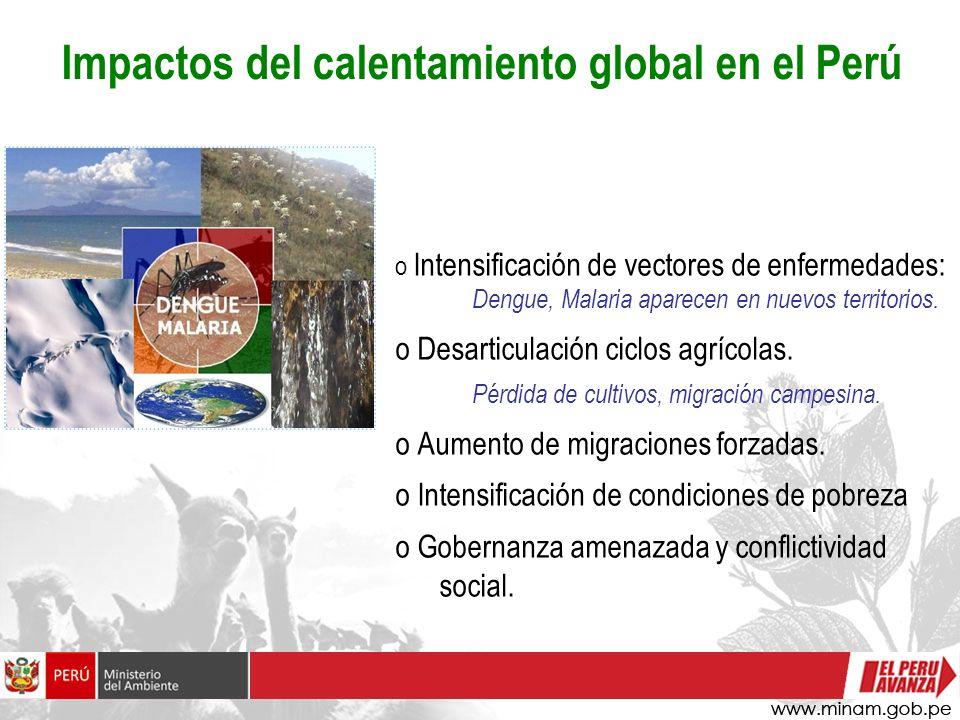 Impactos del calentamiento global en el Perú o Intensificación de vectores de enfermedades: Dengue, Malaria aparecen en nuevos territorios. o Desartic