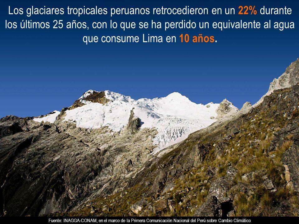 Los glaciares tropicales peruanos retrocedieron en un 22% durante los últimos 25 años, con lo que se ha perdido un equivalente al agua que consume Lim