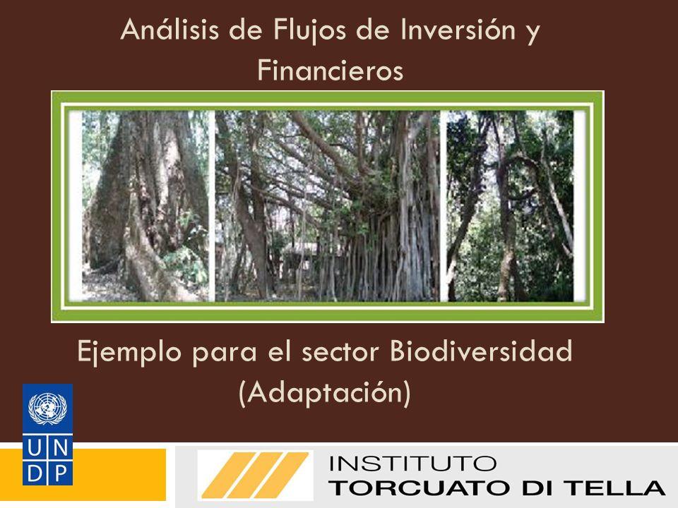 Análisis de Flujos de Inversión y Financieros Manual de Metodologías del PNUD sobre FI&F: Adaptación Ejemplo para el sector Biodiversidad (Adaptación)