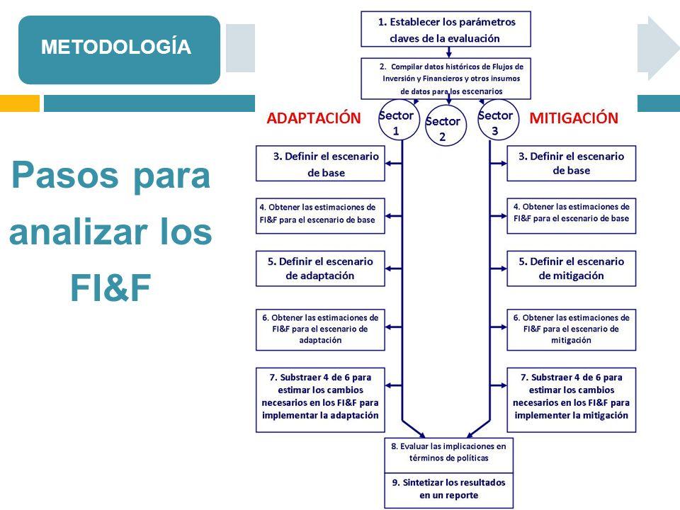 Pasos para analizar los FI&F METODOLOGÍA