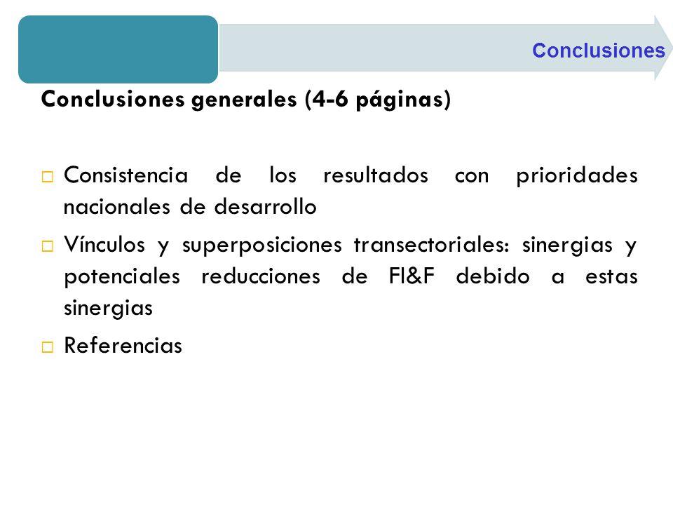 Conclusiones generales (4-6 páginas) Consistencia de los resultados con prioridades nacionales de desarrollo Vínculos y superposiciones transectoriales: sinergias y potenciales reducciones de FI&F debido a estas sinergias Referencias Conclusiones