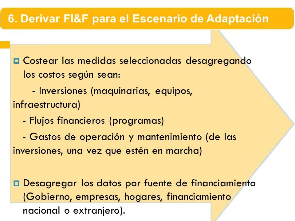 Costear las medidas seleccionadas desagregando los costos según sean: - Inversiones (maquinarias, equipos, infraestructura) - Flujos financieros (prog