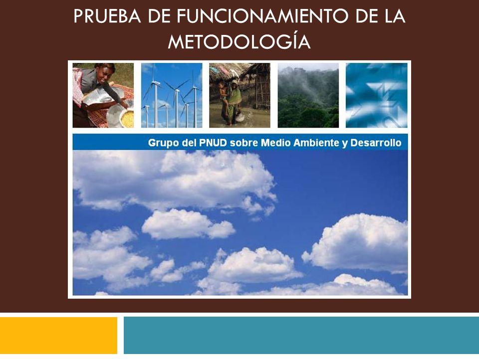 Pasos de las evaluaciones sectoriales del flujo de inversiones y financiamiento para abordar el cambio clim á tico