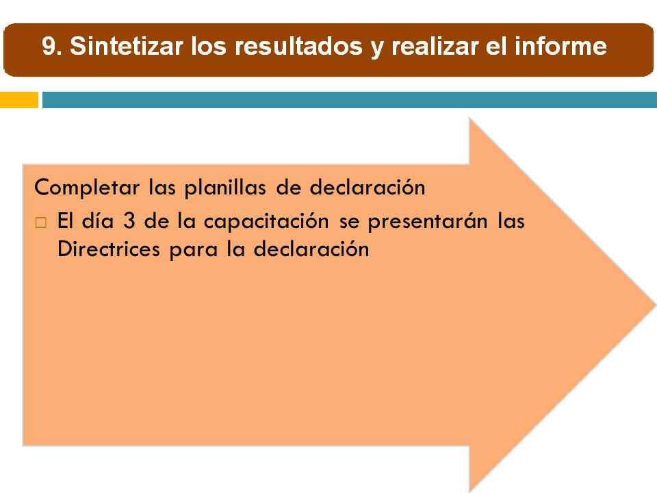 Completar las planillas de declaración El día 3 de la capacitación se presentarán las Directrices para la declaración