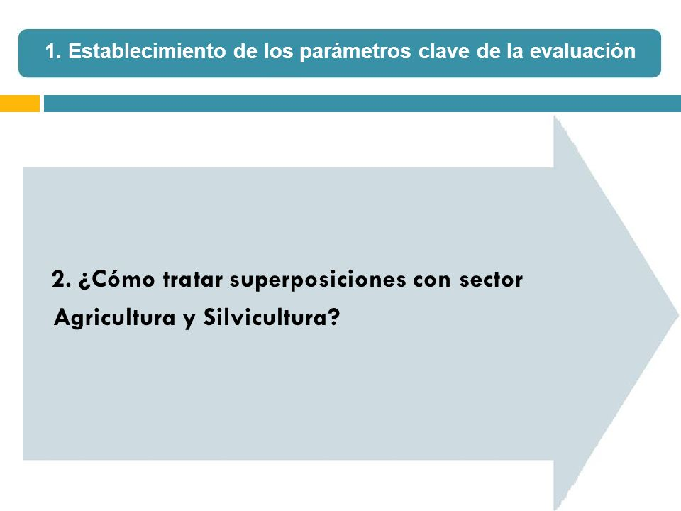 2. ¿Cómo tratar superposiciones con sector Agricultura y Silvicultura? 1. Establecimiento de los parámetros clave de la evaluación