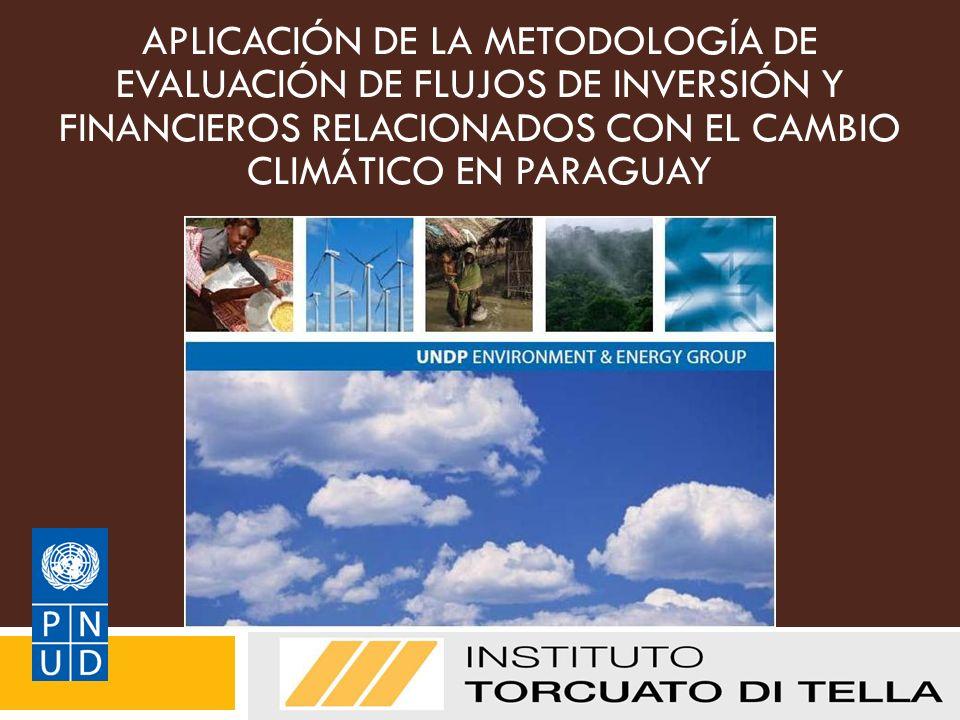 APLICACIÓN DE LA METODOLOGÍA DE EVALUACIÓN DE FLUJOS DE INVERSIÓN Y FINANCIEROS RELACIONADOS CON EL CAMBIO CLIMÁTICO EN PARAGUAY Grupo del PNUD sobre