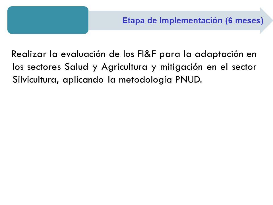 Realizar la evaluación de los FI&F para la adaptación en los sectores Salud y Agricultura y mitigación en el sector Silvicultura, aplicando la metodol