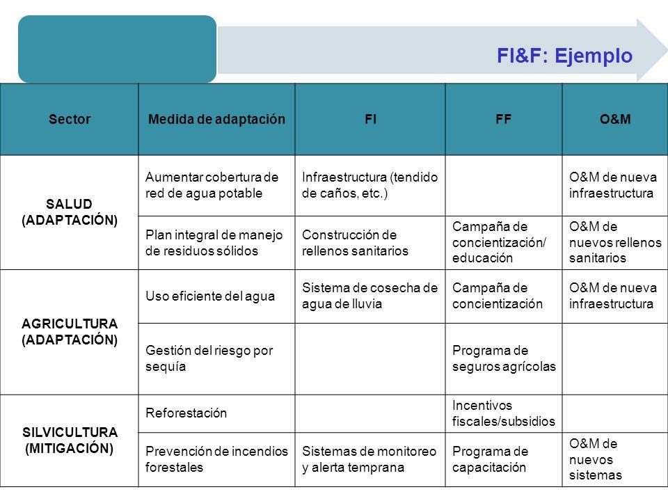 FI&F: Ejemplo SectorMedida de adaptaciónFIFFO&M SALUD (ADAPTACIÓN) Aumentar cobertura de red de agua potable Infraestructura (tendido de caños, etc.)