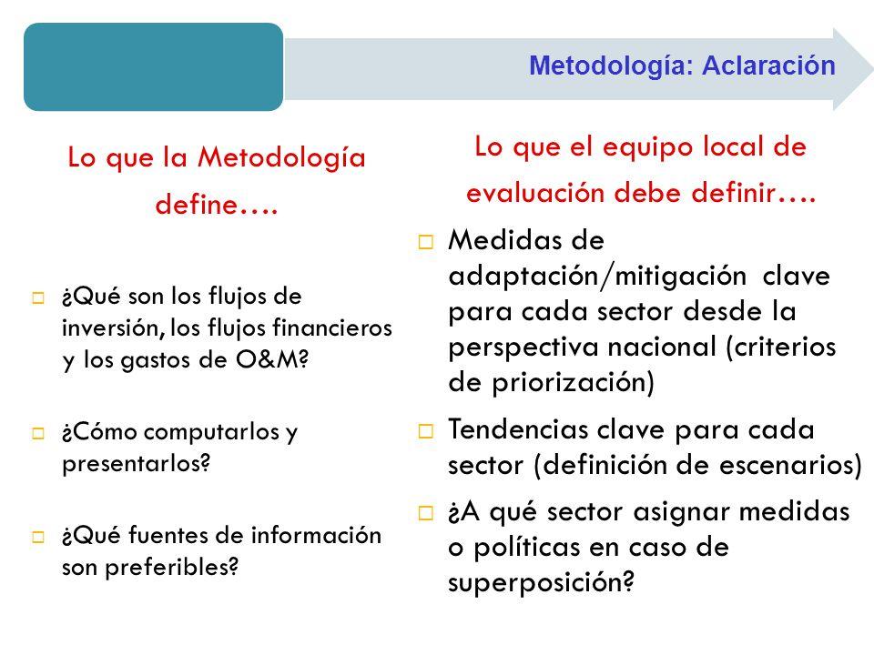 Lo que la Metodología define…. ¿Qué son los flujos de inversión, los flujos financieros y los gastos de O&M? ¿Cómo computarlos y presentarlos? ¿Qué fu