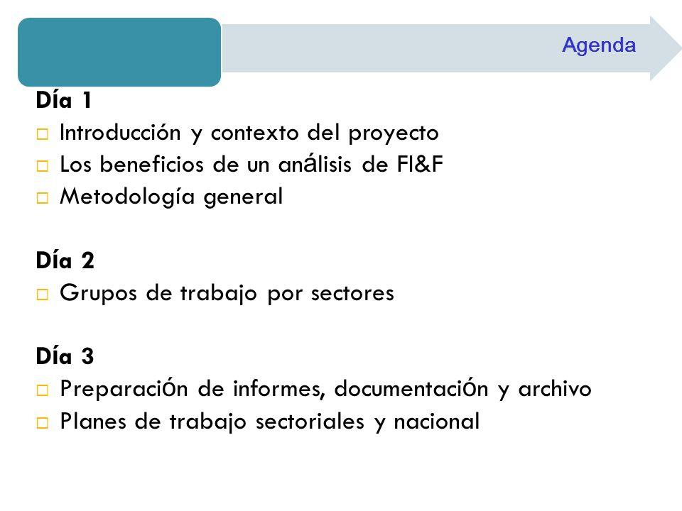 D í a 1 Introducción y contexto del proyecto Los beneficios de un an á lisis de FI&F Metodología general D í a 2 Grupos de trabajo por sectores D í a