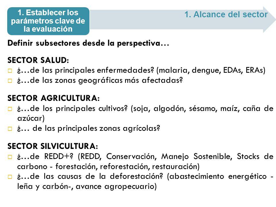 Definir subsectores desde la perspectiva… SECTOR SALUD: ¿…de las principales enfermedades? (malaria, dengue, EDAs, ERAs) ¿…de las zonas geográficas má