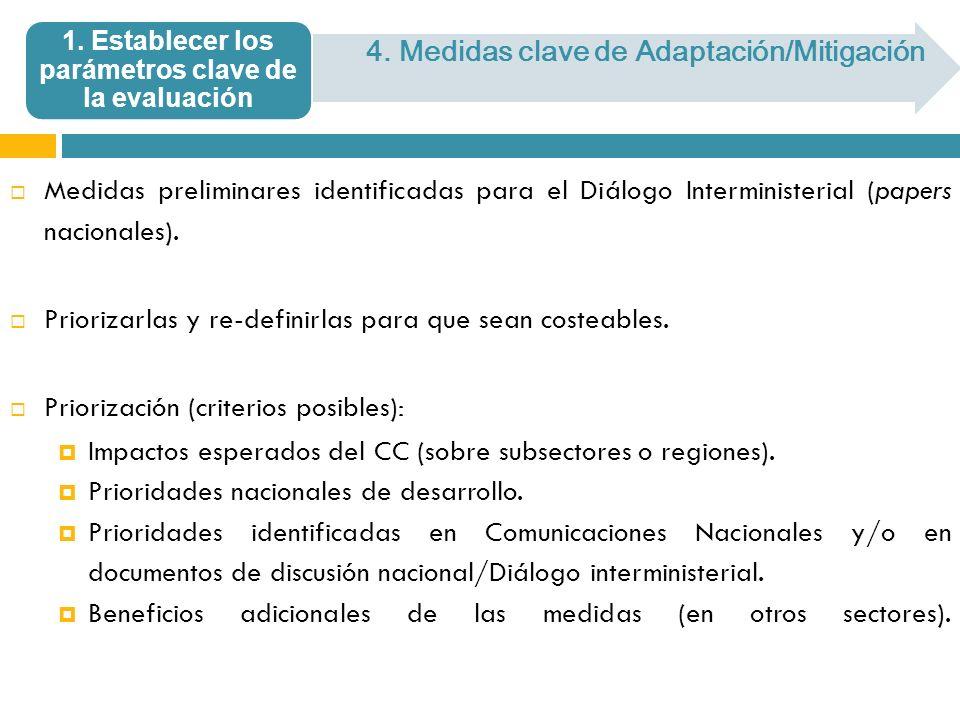 Medidas preliminares identificadas para el Diálogo Interministerial (papers nacionales). Priorizarlas y re-definirlas para que sean costeables. Priori