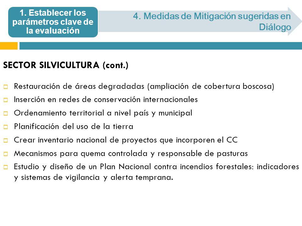 SECTOR SILVICULTURA (cont.) Restauración de áreas degradadas (ampliación de cobertura boscosa) Inserción en redes de conservación internacionales Orde