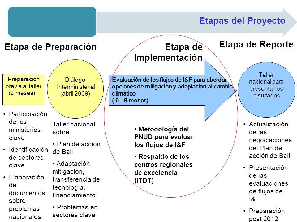 Etapas del Proyecto Preparación previa al taller (2 meses) Di á logo Interministerial (abril 2009) Evaluaci ó n de los flujos de I&F para abordar opci