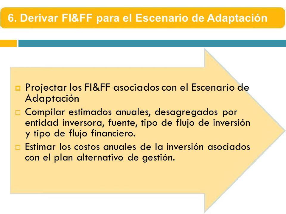 Projectar los FI&FF asociados con el Escenario de Adaptación Compilar estimados anuales, desagregados por entidad inversora, fuente, tipo de flujo de inversión y tipo de flujo financiero.