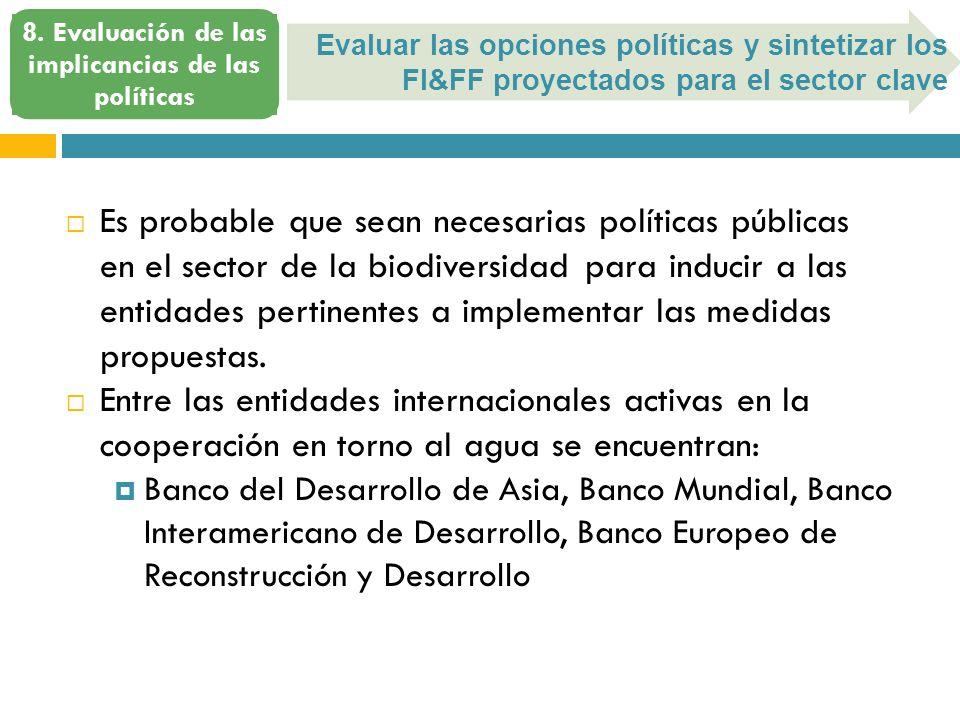 Evaluar las opciones políticas y sintetizar los FI&FF proyectados para el sector clave 8.