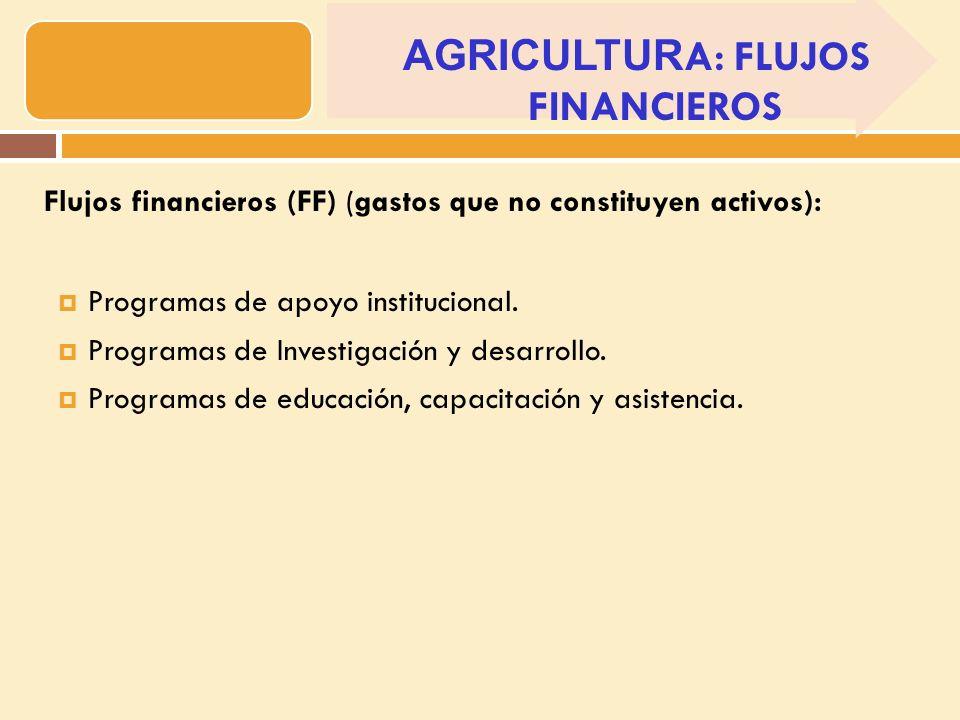 Flujos financieros (FF) (gastos que no constituyen activos): Programas de apoyo institucional.