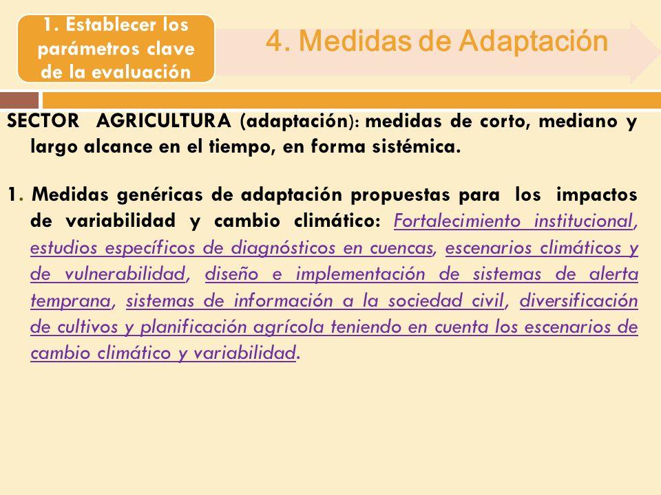 SECTOR AGRICULTURA (adaptación ): medidas de corto, mediano y largo alcance en el tiempo, en forma sistémica.