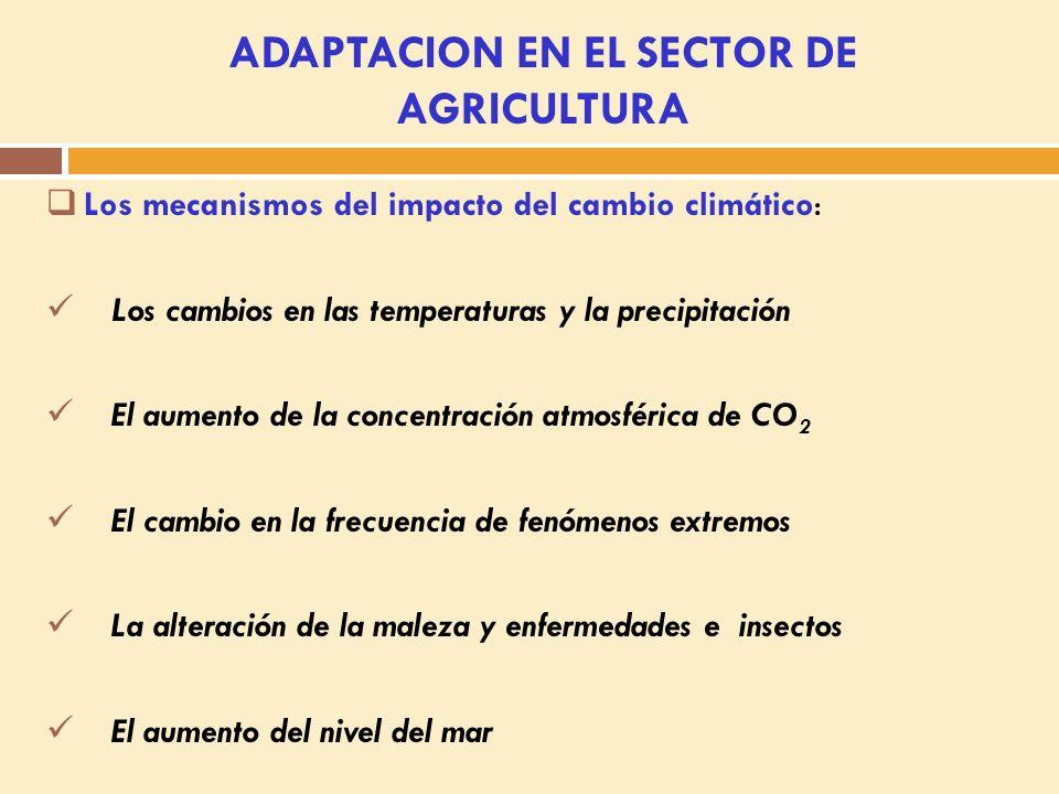 SECTOR AGRICULTURA (adaptación) 2.