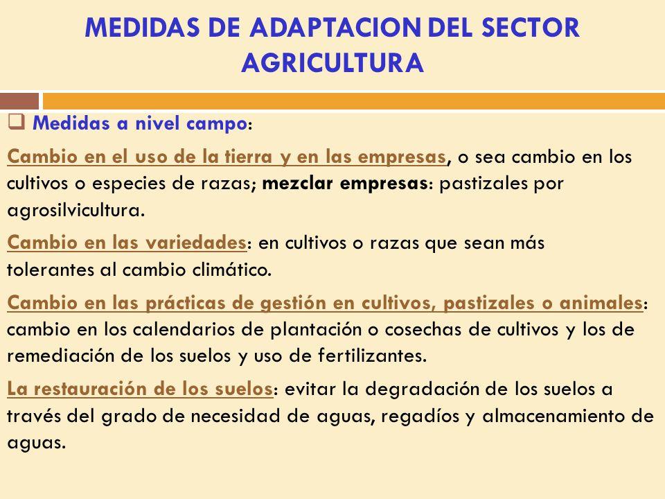 MEDIDAS DE ADAPTACION DEL SECTOR AGRICULTURA Medidas a nivel campo: Cambio en el uso de la tierra y en las empresas, o sea cambio en los cultivos o especies de razas; mezclar empresas: pastizales por agrosilvicultura.