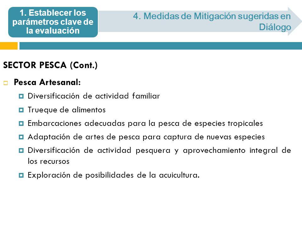 SECTOR PESCA (Cont.) Pesca Artesanal: Diversificación de actividad familiar Trueque de alimentos Embarcaciones adecuadas para la pesca de especies tro