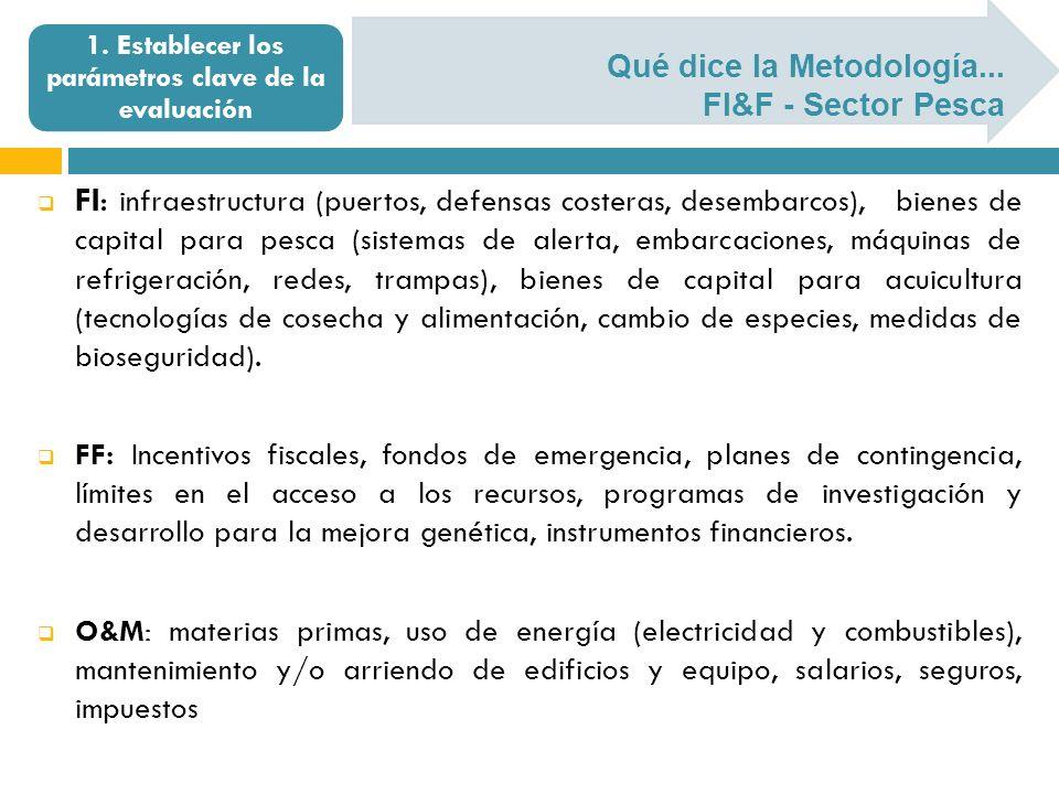 Qué dice la Metodología... FI&F - Sector Pesca 1. Establecer los parámetros clave de la evaluación FI: infraestructura (puertos, defensas costeras, de