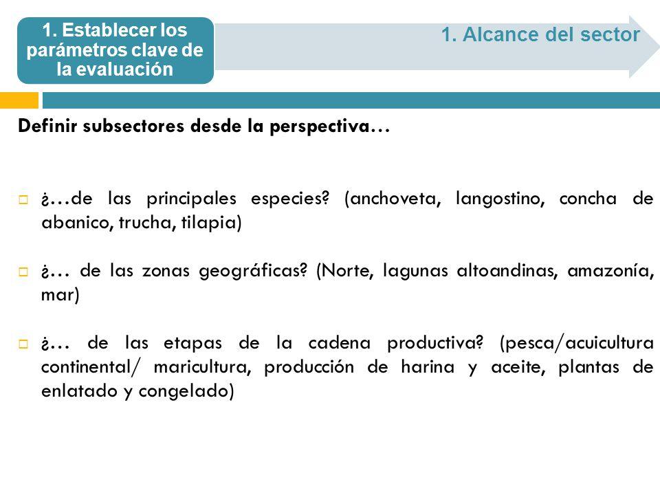 Definir subsectores desde la perspectiva… ¿…de las principales especies? (anchoveta, langostino, concha de abanico, trucha, tilapia) ¿… de las zonas g