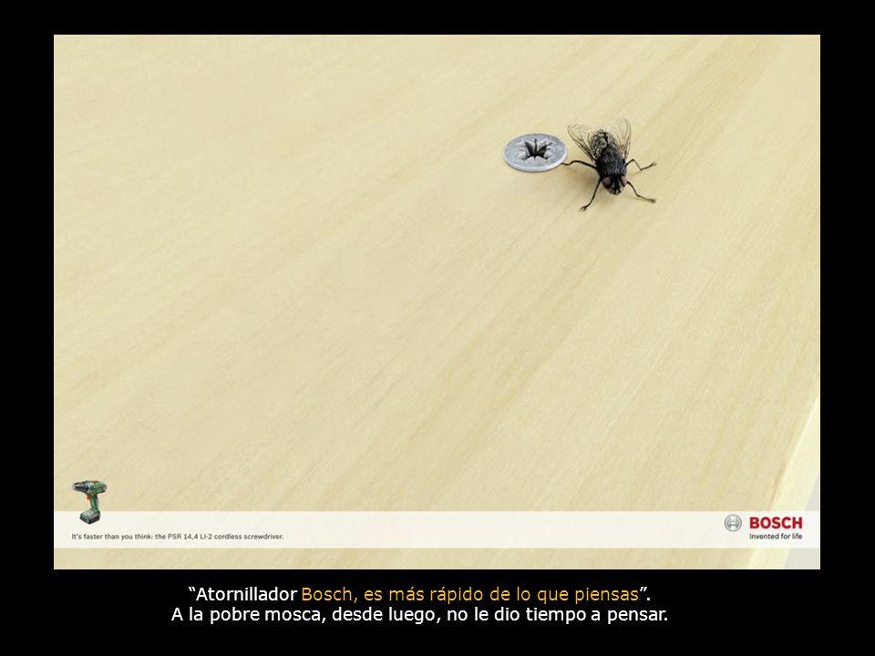 Atornillador Bosch, es más rápido de lo que piensas. A la pobre mosca, desde luego, no le dio tiempo a pensar.