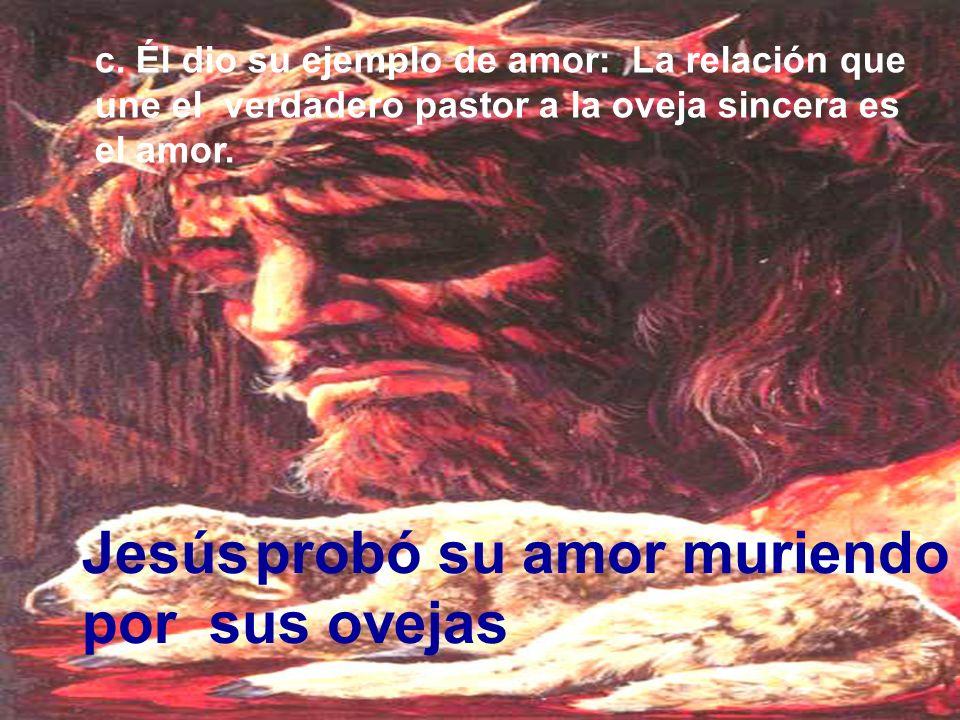 ¿ Sí esto es aún maravilloso: Jesús aun te dice: Conozco tus lagrimas; yo también lloré Yo soy el buen pastor y nada te faltará