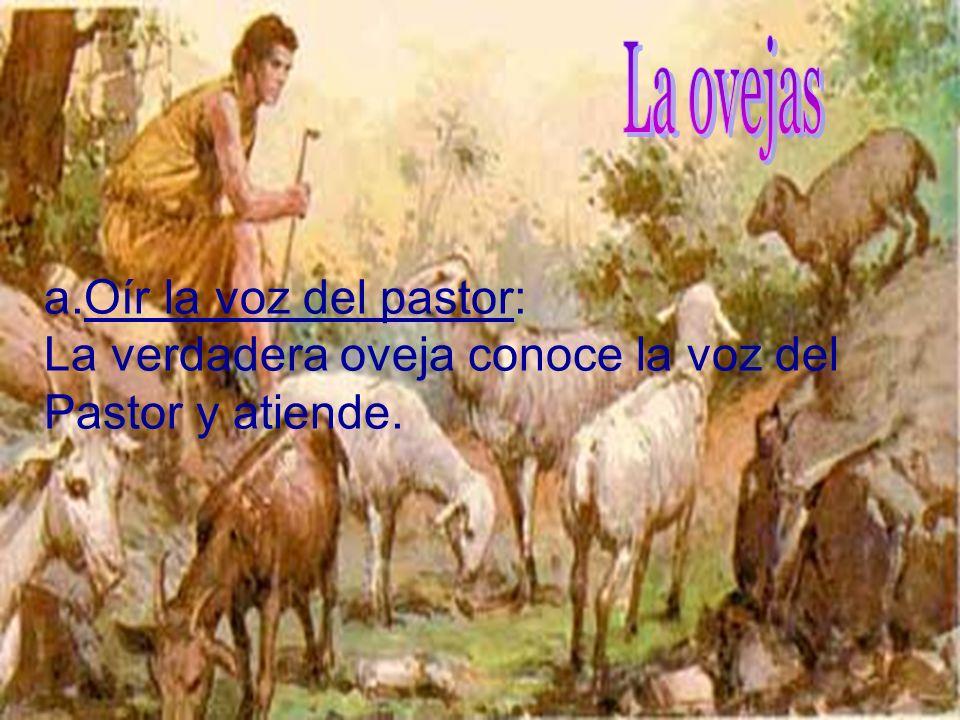c. Él dio su ejemplo de amor: La relación que une el verdadero pastor a la oveja sincera es el amor. Jesús probó su amor muriendo por sus ovejas