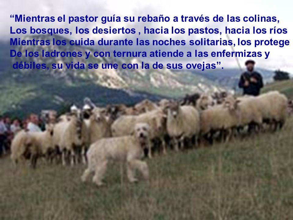 El pastor tenía que salir de las ciudades amuralladas y llevar su rebaño en busca de agua y verdes pastos, por lo que necesitaba enfrentar animales sa