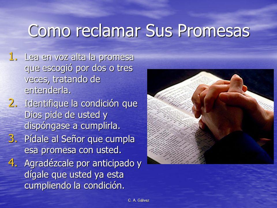 C. A. Gálvez El poder de las Promesas Hay 3,565 promesas en las SSEE Hay 3,565 promesas en las SSEE Cuantas las ha hecho suyas y las ha reclamado al S