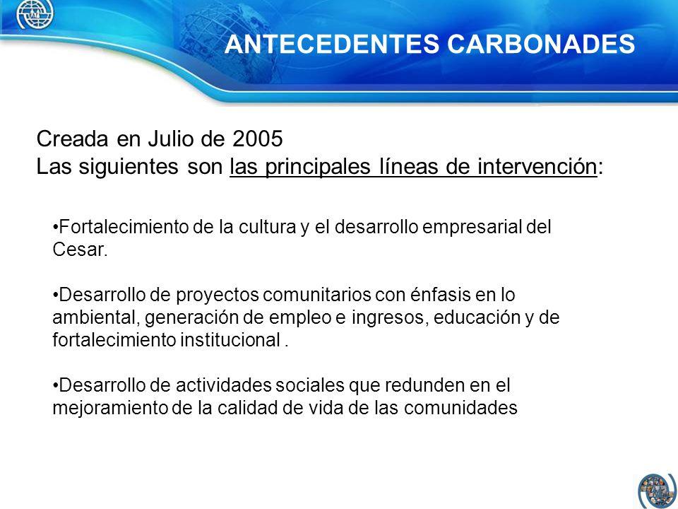 Creada en Julio de 2005 Las siguientes son las principales líneas de intervención: Fortalecimiento de la cultura y el desarrollo empresarial del Cesar