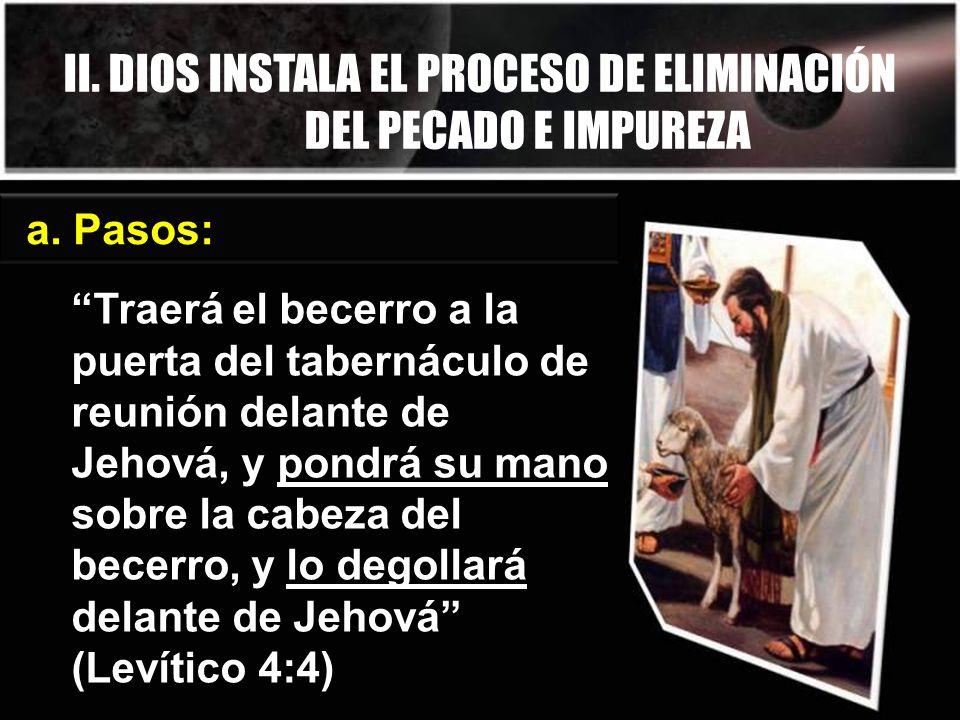 II. DIOS INSTALA EL PROCESO DE ELIMINACIÓN DEL PECADO E IMPUREZA a. Pasos: Traerá el becerro a la puerta del tabernáculo de reunión delante de Jehová,