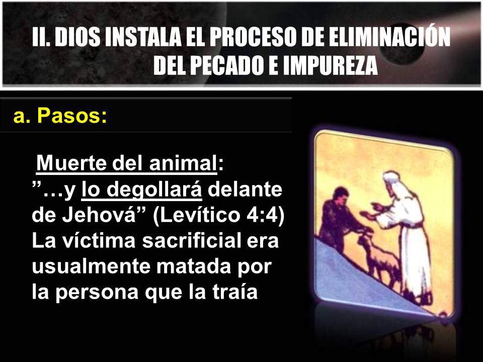 II. DIOS INSTALA EL PROCESO DE ELIMINACIÓN DEL PECADO E IMPUREZA a. Pasos: Muerte del animal: …y lo degollará delante de Jehová (Levítico 4:4) La víct