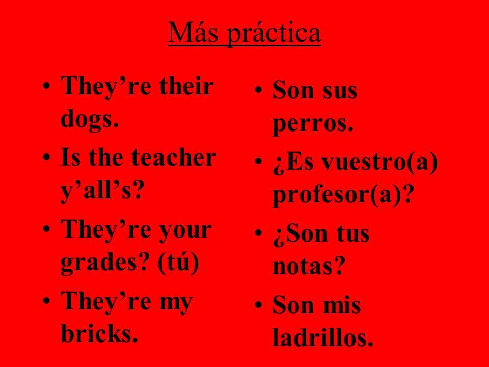 Más práctica Theyre their dogs. Is the teacher yalls? Theyre your grades? (tú) Theyre my bricks. Son sus perros. ¿Es vuestro(a) profesor(a)? ¿Son tus