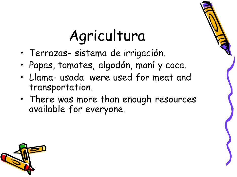 Agricultura Terrazas- sistema de irrigación. Papas, tomates, algodón, maní y coca. Llama- usada were used for meat and transportation. There was more