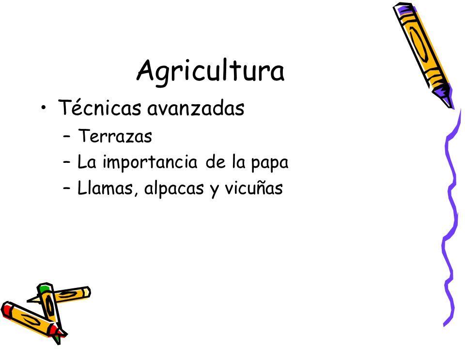 Agricultura Técnicas avanzadas –Terrazas –La importancia de la papa –Llamas, alpacas y vicuñas