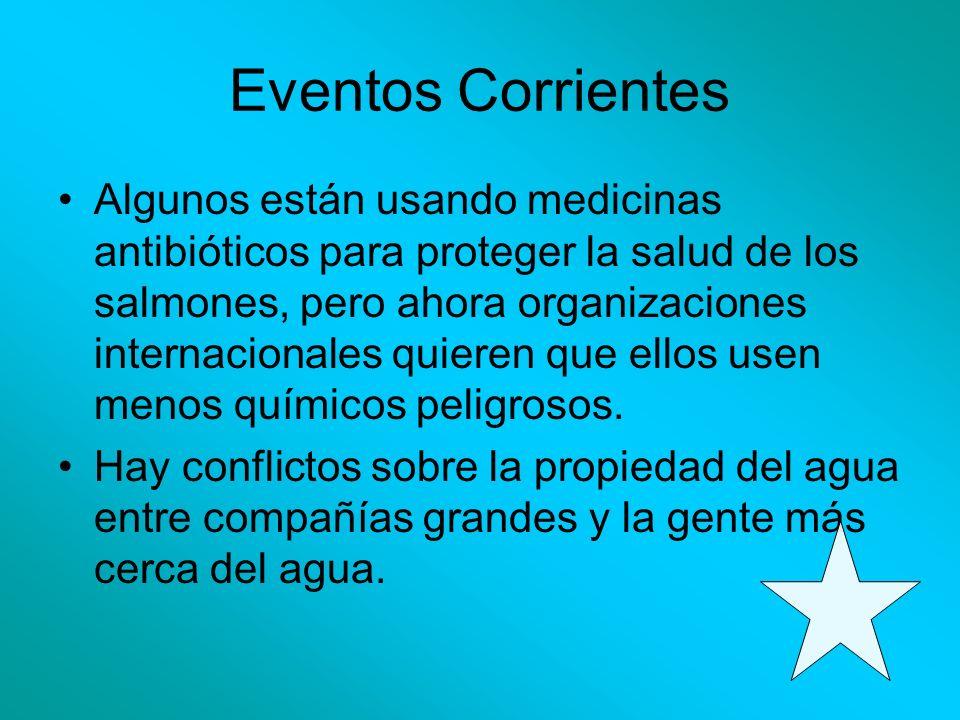 Eventos Corrientes Algunos están usando medicinas antibióticos para proteger la salud de los salmones, pero ahora organizaciones internacionales quier