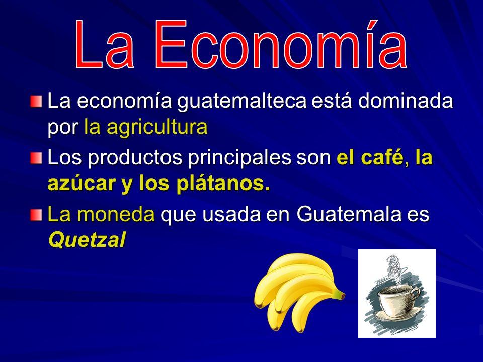 La economía guatemalteca está dominada por la agricultura Los productos principales son el café, la azúcar y los plátanos. La moneda que usada en Guat