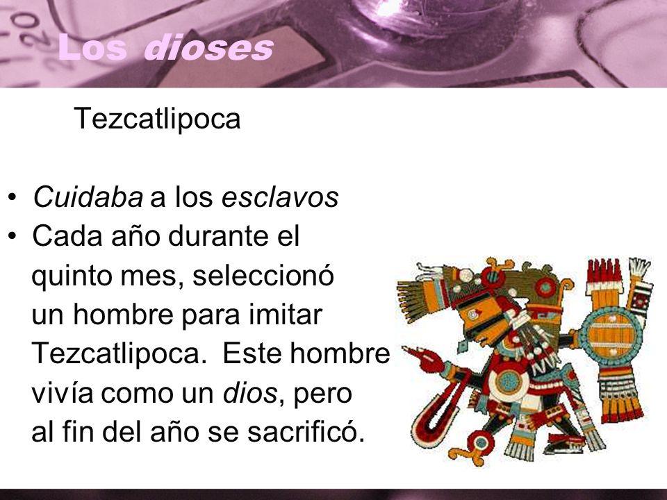 Los dioses Tezcatlipoca Cuidaba a los esclavos Cada año durante el quinto mes, seleccionó un hombre para imitar Tezcatlipoca. Este hombre vivía como u