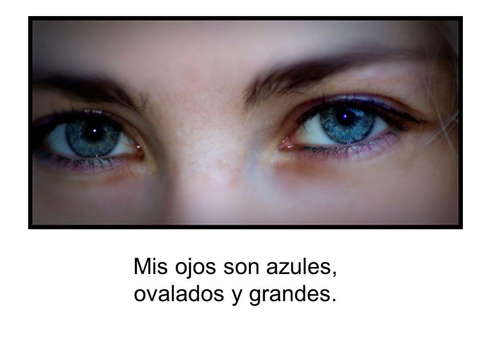 Mis ojos son azules, ovalados y grandes.