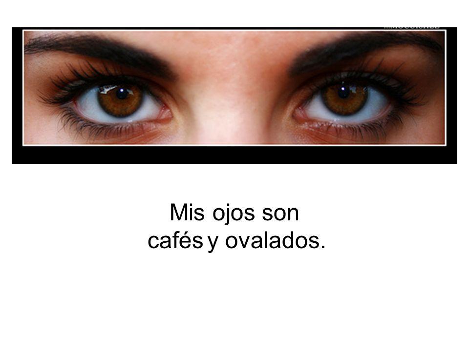 Mis ojos son marrones. o Tengo los ojos marrones.